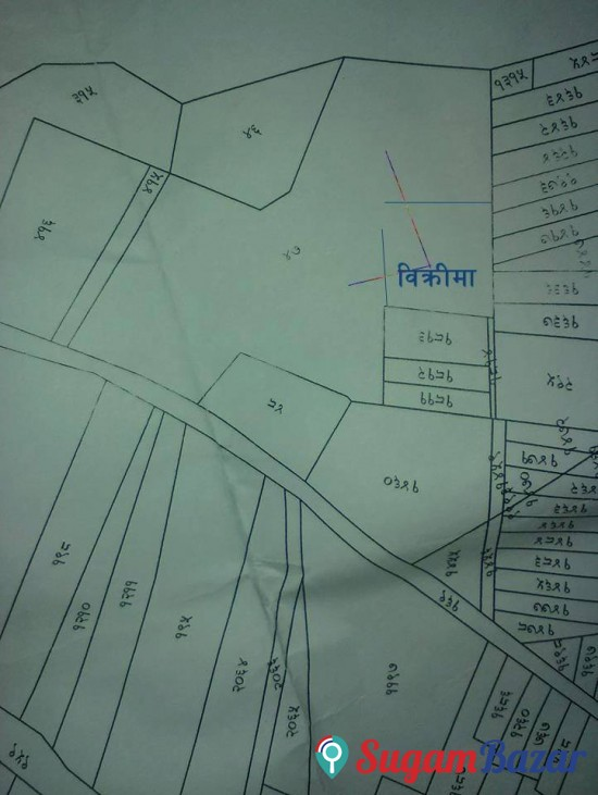 Land for Sale in Parshadhap