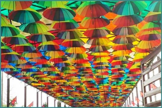 Umbrella Street, Patihani