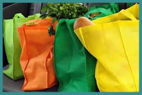 Non Woven  Disposable Bags