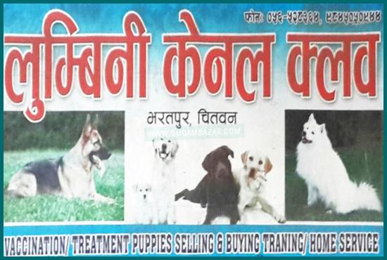 Lumbini Kennel Club