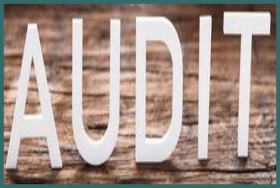 Registered Auditor