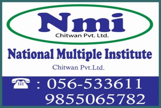 National Multiple Institute (NMI)