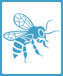 Bee Farming and Honey