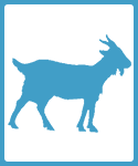 Goat and Rabbit Farm