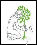 Floriculture farming